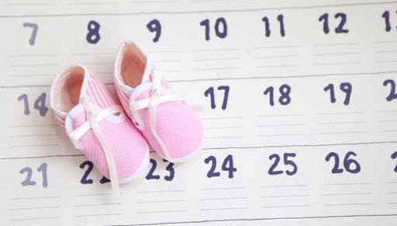 baby shoes with calendar